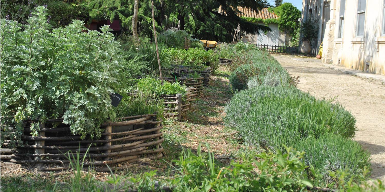 Jardin medieval i atelier chaters n for Jardin medieval